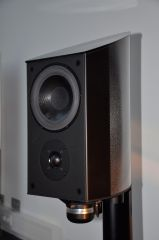 DSC2501