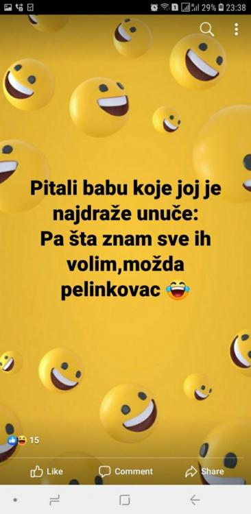 pelinkovac.thumb.jpg.0744a28466ec3377158a11ca405388cd.jpg